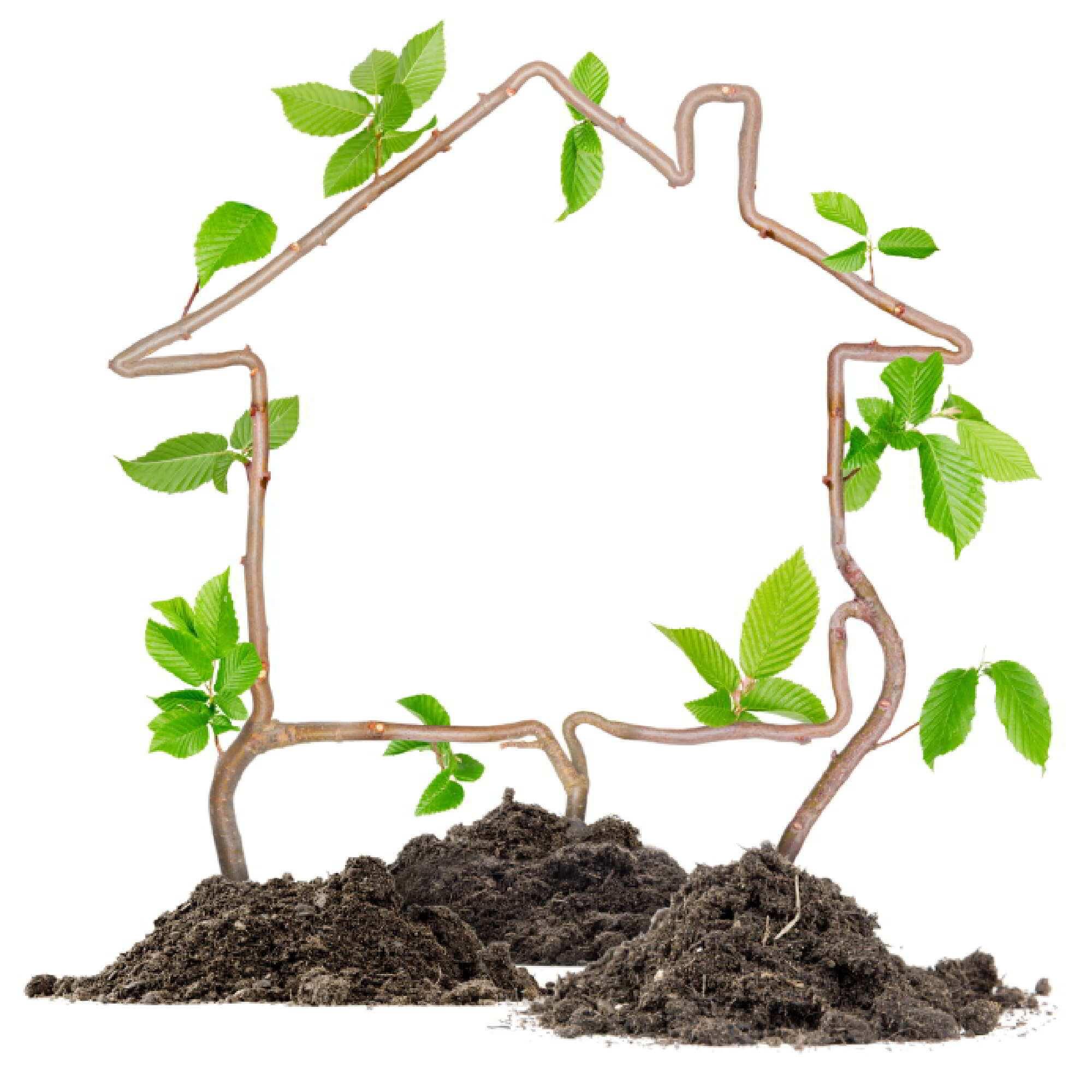 home_equity.jpg